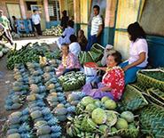 B0HAJK Market place in Talamahu, Nuku?alofa, Tonga, South Pacific, Oceania