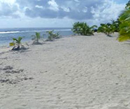 white_sands_beach2