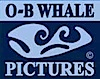 O-B copyright_logo_100