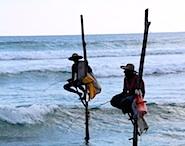 pole_fishing_185